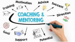 30 Minute Business Mentoring Session